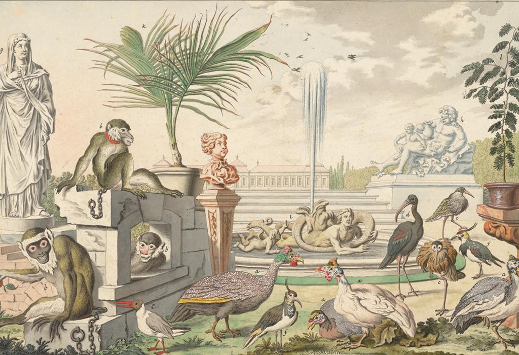 Ein Bild von Salomon Kleiner (1700-1761). Es zeigt den von Prinz Eugen im Park des Oberen Belvedere in Wien errichteten Tiergarten.